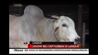 Video Jokowi Beli Sapi Kurban di Langkat - iNews 23 07 2019 MP3, 3GP, MP4, WEBM, AVI, FLV Agustus 2019