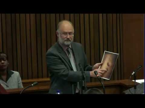 16 - Court rule on Pistorius trial postponement request and Independent forensic expert, Roger Dixon continues testifying.