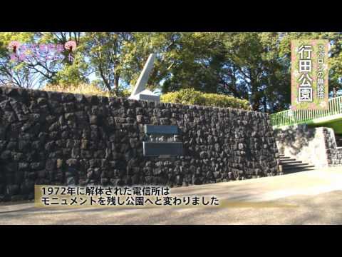 アドスポットお花見特集-行田公園-