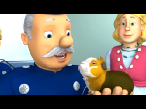 Fireman Sam   Keep Your Small Pets Safe This Summer   Sam's Animal Safety Tips   Videos For Kids