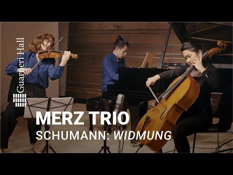 See video  Schumann