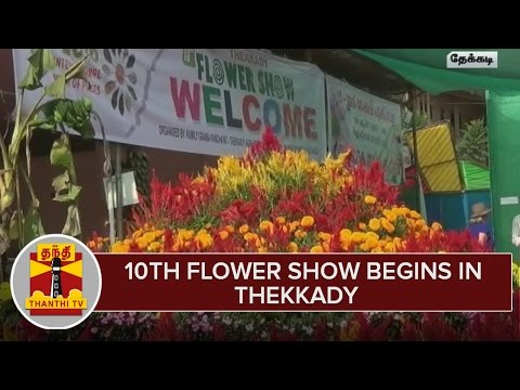 10th-Flower-Show-Begins-in-Thekkady--Thanthi-TV