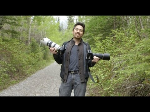 Nikkor AF-S 80-400 VR vs Sony 70-400 II Shootout