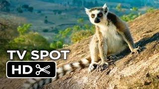 Nonton Island Of Lemurs  Madagascar Tv Spot 1  2014    Nature Documentary Hd Film Subtitle Indonesia Streaming Movie Download