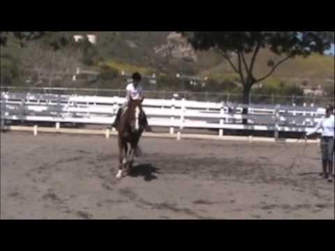Haley Horse Riding Adventure