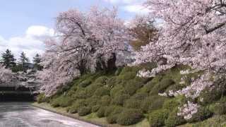 【HD】山形県 松が岬公園(米沢城址) – がんばれ東北!