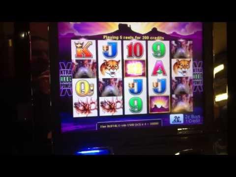 Buffalo Slot Machine 29 Free Spins Max Bet Jackpot 2 cent machine!
