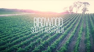 Birdwood Australia  city photos : BIRDWOOD WINERY // SOUTH AUSTRALIA