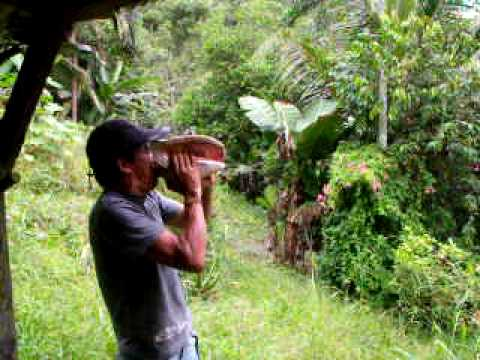 The people who protect this ecological reserve use this method to communicate in the dense forests of Darien