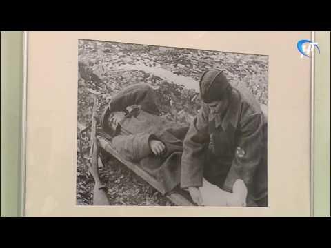 В Молодежной библиотеке «Читай-город» открылась фотовыставка «Память о войне»