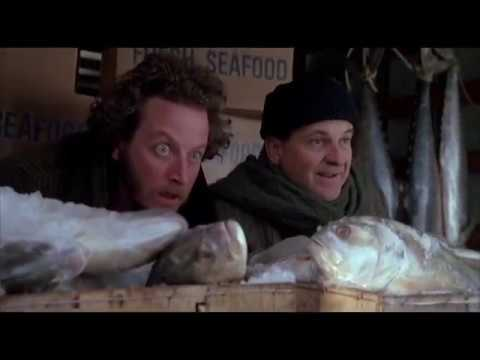 Home Alone 2 Minus Kevin
