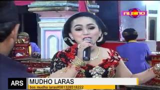 streaming  oleh ALBINO COKEK - MUDHO LARAS Live PANDAK,KRIKILAN,MASARAN