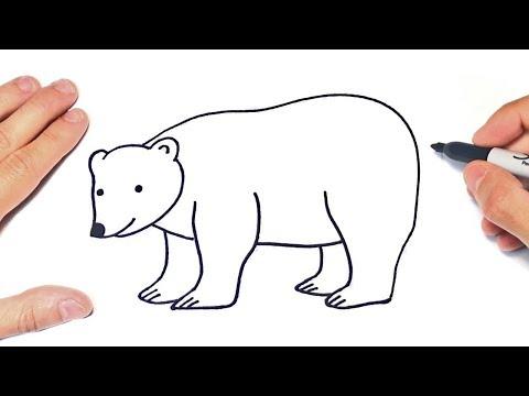 How to draw a Polar Bear Step by Step   Polar Bear Drawing Lesson