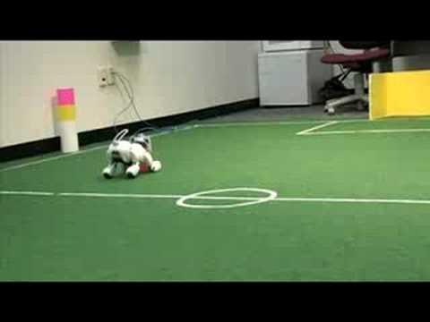 Robocup - Roboterfußball und was dahinter steckt