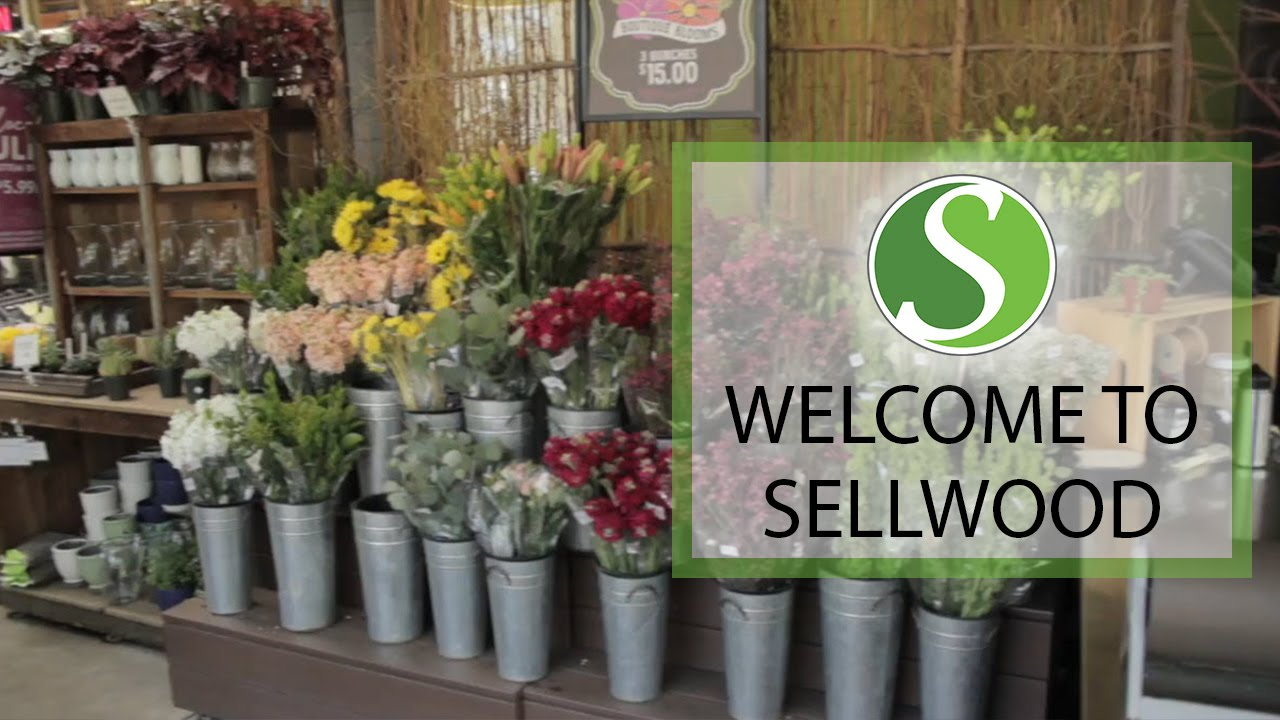 A Quick Tour of the Sellwood Neighborhood