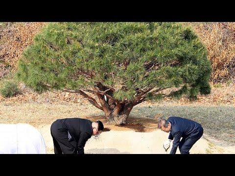 Große Ankündigungen in Korea: Friedensvertrag und d ...