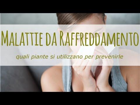 raffreddore: come prevenirlo con piante naturali