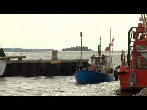 Ostsee: Fischsterben durch Gülle aus intensiver Landw ...