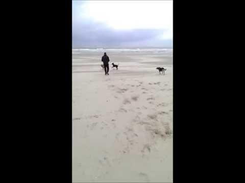 Kika nu Chica op het strand (видео)