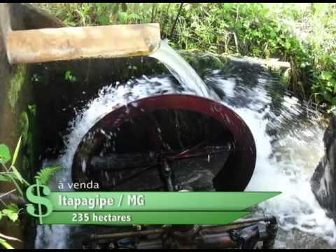 FAZENDA À VENDA EM ITAPAGIPE / MG COM 235 HECTARES