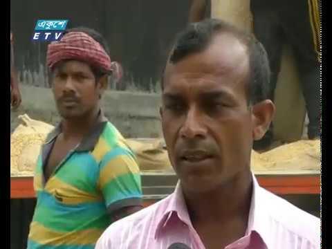 বোরোর ভরা মৌসুমেও ধানের দর নিয়ে হতাশ কৃষক
