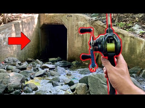 ARE THERE FISH IN A SEWAGE TUNNEL??? (Google Maps Fishing Challenge)
