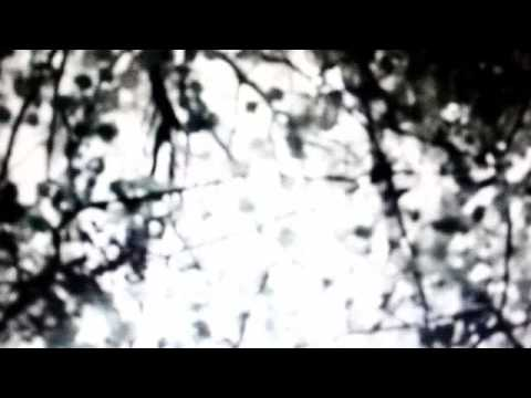 Factory Girl movie (видео)