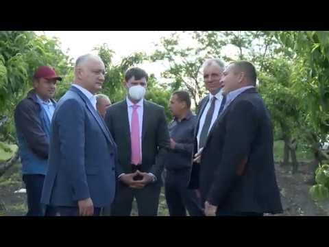 Глава государства посетил двух экономических агентов и одного ветерана из Каушанского района