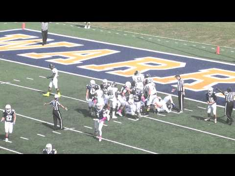 Stevenson Football at Lycoming Highlights