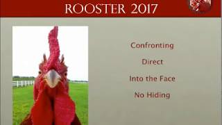 Forecast for the Fire Rooster Year 2017