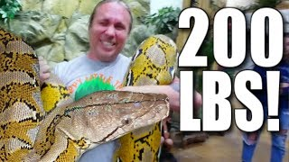 200 POUND SNAKE AND LOTS OF SNAKE BITES!!! | BRIAN BARCZYK by Brian Barczyk