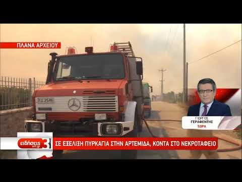 Φωτιές στην Αρτέμιδα και στους Δελφούς | 28/08/2019 | ΕΡΤ