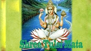 Shree Tulsi Mata Chalisa   Namo Namah Tulsi Maharani   Exclusive Song
