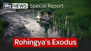 Video Rohingya's Exodus: A special report on Myanmar MP3, 3GP, MP4, WEBM, AVI, FLV September 2017