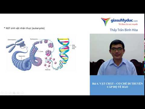Bài 4 Vật chất cơ chế di truyền ở cấp độ tế bào - Luyện thi THPT Quốc Gia