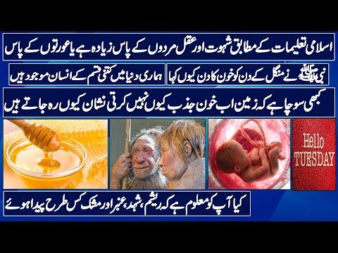 Islamic Random Facts | Episode No.5 | How Honey, Resham, Amber and Mushk are produced  Urdu/hindi