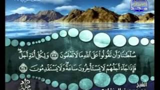 المصحف المرتل 08 للشيخ محمد صديق المنشاوي رحمه الله