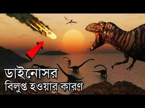 ডাইনোসরদের শেষ দিনটা কেমন ছিল | The End of Dinosaurs! Where did Humans come from in Bangla