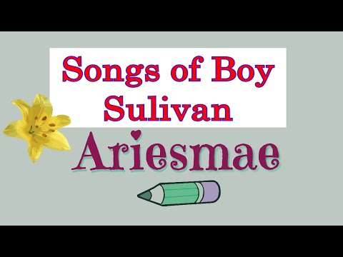 Non Stop Songs of Boy Sullivan (видео)