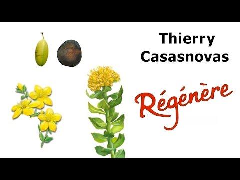 comment prendre griffonia simplicifolia