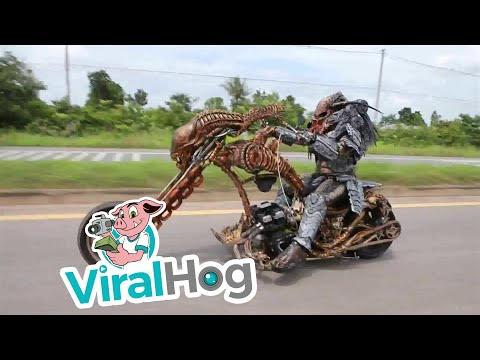 Predator Cosplayer Rides Custom Xenomorph