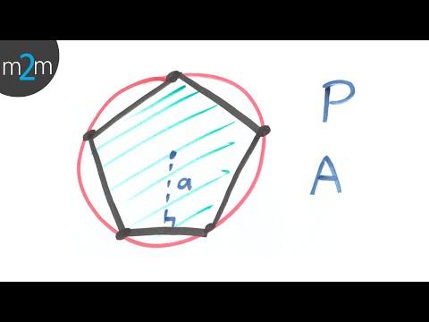 Umfang und Fläche von Polygonen