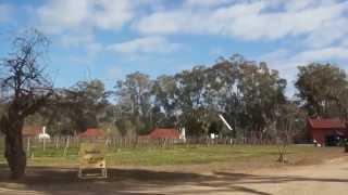 Nagambie Australia  City pictures : オーストラリアのワイナリー (Winery in Nagambie Australia)