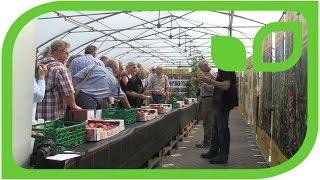 100 Gartenfreunde degustieren Lubera Apfelsorten