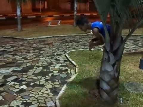 Dinossauro em Ribeirão Corrente !!!