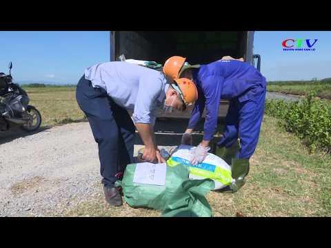 Thu gom xử lý gần 2,3 tấn vỏ thuốc BVTV
