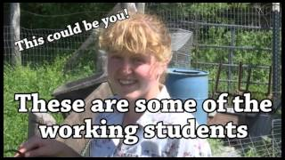Working Student at Horse Boy - New Trails Learning Systems