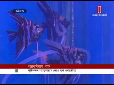 Aquarium park opens for pedestrians' entertainment (15-10-2019) Courtesy: Independent TV