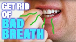 How to Get Rid of Bad Breath Halitosis Remedy Hacks Cure Solution Stop Causes Treatment Avoid Permanently NaturallyTongue Scraper: http://amzn.to/2tAfxxnTherabreath: http://amzn.to/2tGZkajTonsil Stone Remover: http://amzn.to/2sh9MAZBest Toothbrush (Sonicare): http://amzn.to/2tGGLmsBiotene Rinse (Dry Mouth): http://amzn.to/2tGuZbCSugar Free & Plaque Fighting Gum: http://amzn.to/2ufXw54Toothpaste with Triclosan (Fights Biofilms): http://amzn.to/2ufvlDhMy Dental Office: http://www.baselinedental.comIn this video I will go over how to stop bad breath. Actual researched tips that REALLY stop bad breath. At the end of the video I will share the best kept secret that hardly anybody knows.Knowing the cause of Bad Breath is very important.Bad breath or Halitosis is caused by bacteria that take the protein you eat and break it down producing a byproducts called Volatile Sulfur Compounds or VSC's. VSC's float in the air and are what make your breath stink because of the sulfur they contain. This bacteria that produce VSC's can be found in your teeth, gums, tongue, throat or even stomach. Getting rid of bad breath is accomplished by finding where the majority of the bacteria producing the VSC's are located and then eliminating or at least reducing them. In this video I will go over how to do this. Then at the end of the video I will share the secret to finish off any remaining odor's caused by the VSC's.