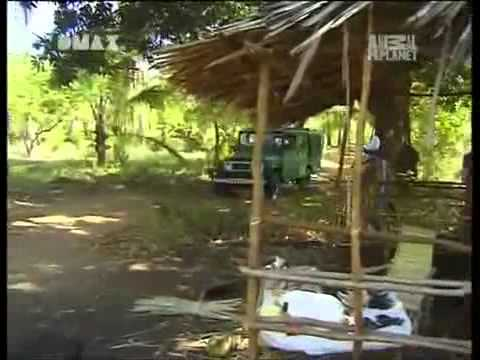 Kenia: Crocodile Hunter « Die schwarze Mamba » | [3 ...